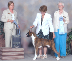 Two best puppy in group wins in Swift Current.