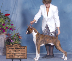 BOW, BPIB, new champion under judge Lee Reasin.