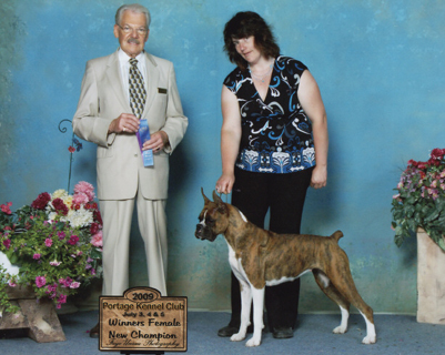 Gryphon getting her championship under Jack Ireland with Sheila handling.