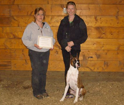Lennon awarded his Herding Instinct Certificate.