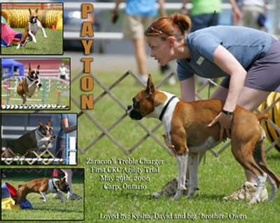 Payton and Kysha at their very first competitive agility trial in Carp, Ontario.