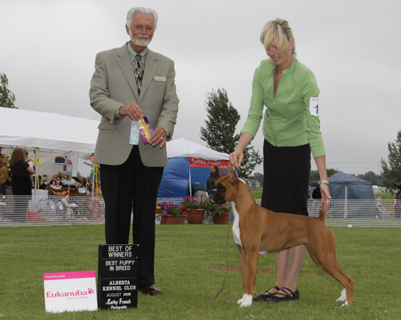 Presley getting BOW and BPIB under judge Houston Clark with Natasja handling.