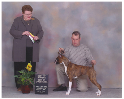 Secret posing with breeder owner handler Dave Gilmour and judge Thora Brown.